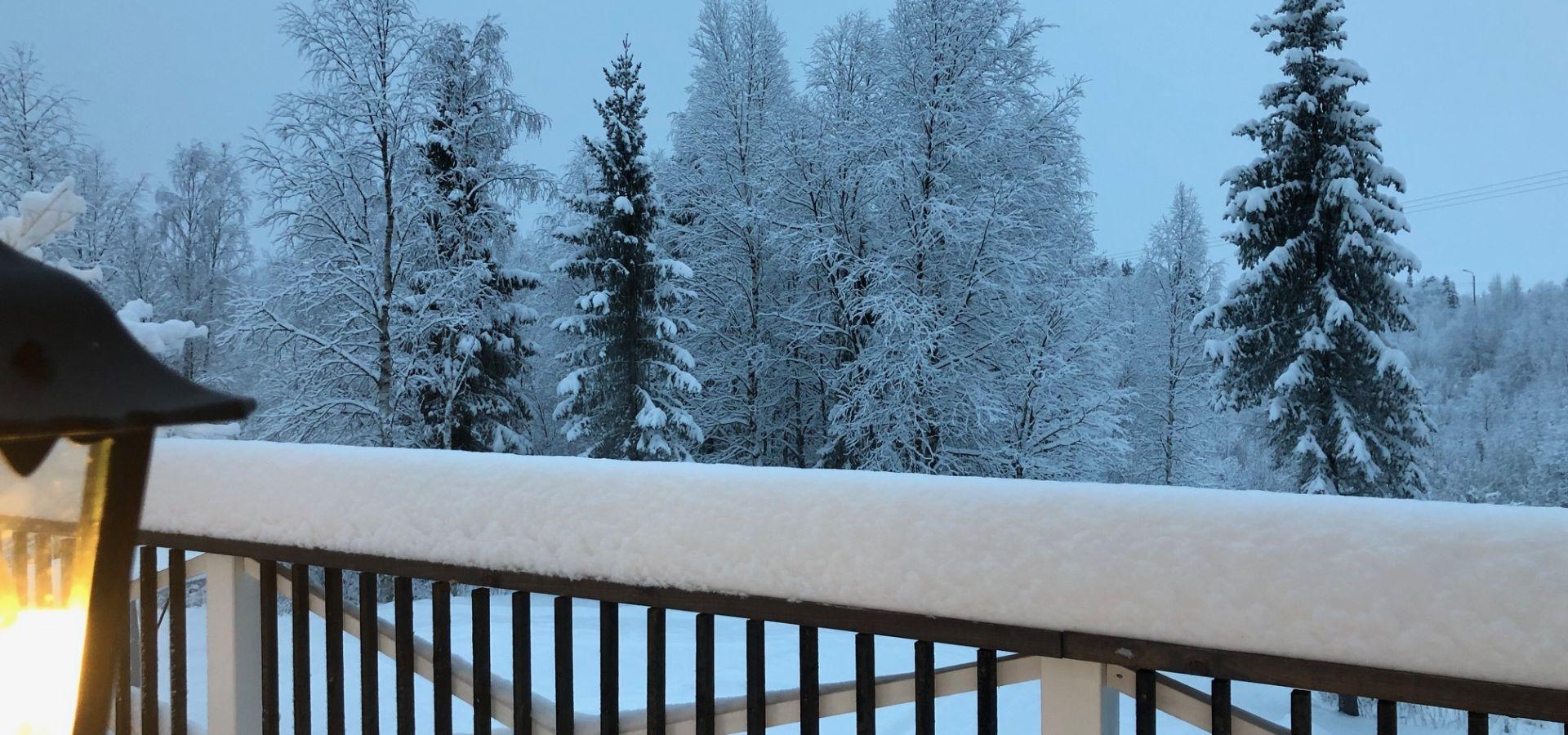 Luminen maisema mökin ympärillä